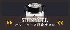 shinygel